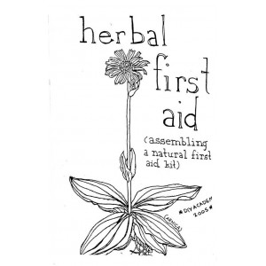 Herbal First Aid Zine by Raleigh Briggs