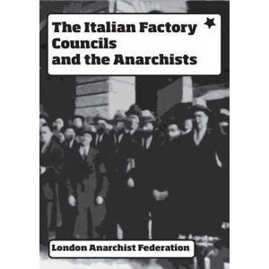 THE ITALIAN FACTORY COUNCILS AND THE ANARCHISTS