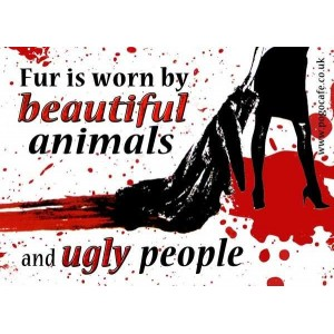Fur is worn by beautiful animals.....