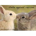 Unite Bunnies