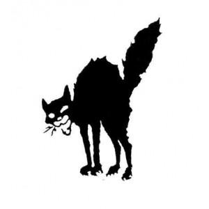 107, Wildcat Badge