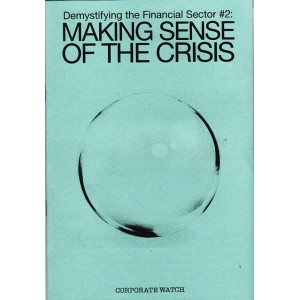 Making Sense of the Crisis
