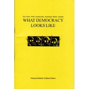 What Democracy Looks Like