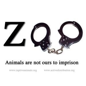 Zoo Prison sticker