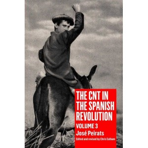 The CNT in the Spanish Revolution Volume 3