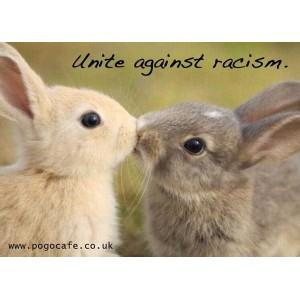 Unite Against Racism (Bunnies) Sticker