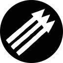 351, Anti Fascists Arrows