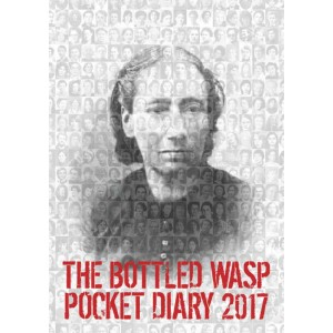 The Bottled Wasp Diary 2017