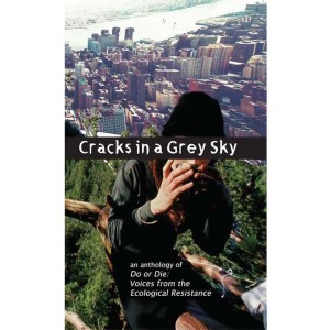 Cracks in a Grey Sky