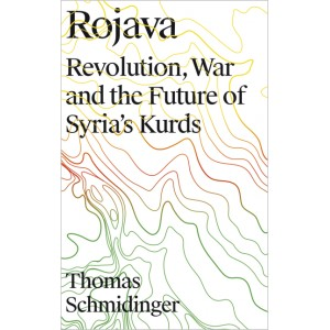 Rojava. Revolution, War and the Future of Syria's Kurds