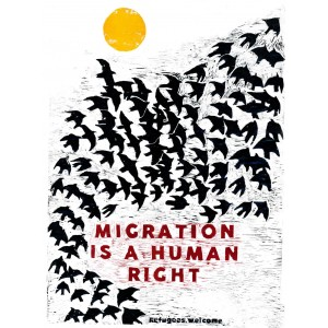 Migration is a Human Right Sticker