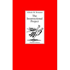 The insurrectional project